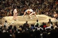 別に相撲業界なんてどうでもいいけどこれ悪いの貴乃花で解決でい... - Yahoo!知恵袋